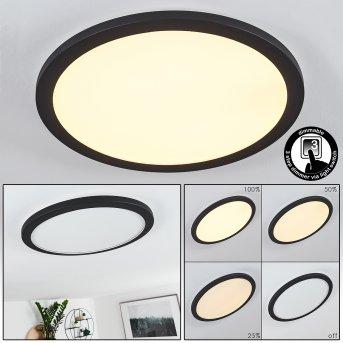 Siguna Deckenleuchte LED Schwarz, Weiß, 1-flammig