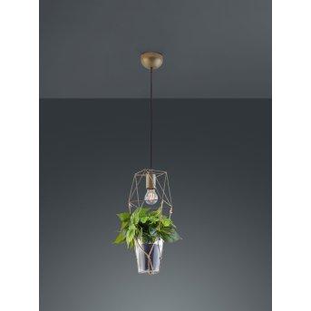 Trio Leuchten Plant Pendelleuchte LED Nickel-Matt, Dunkelbraun, 1-flammig