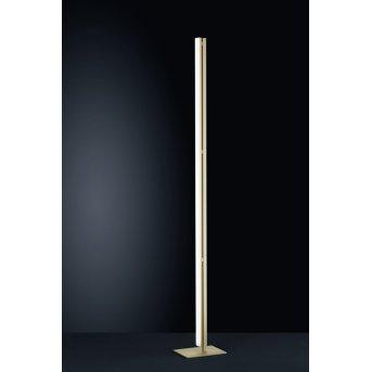 Helestra VENTA Stehleuchte LED Chrom, Champagnerfarben, 1-flammig