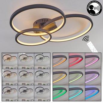 Moemoto Deckenleuchte LED Anthrazit, 1-flammig, Fernbedienung