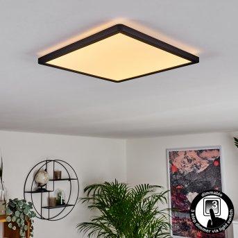 Boyero LED Panel Schwarz, 1-flammig