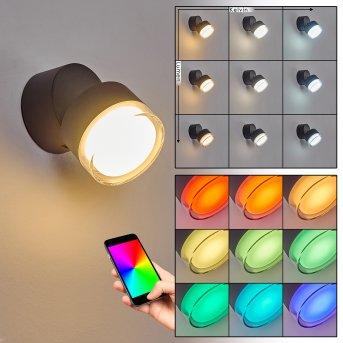 Papagayos Außenwandleuchte LED Anthrazit, 1-flammig, Farbwechsler