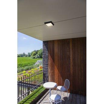 Lutec Helena Außendeckenleuchte LED Anthrazit, 1-flammig