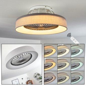 Moli Deckenventilator LED Grau, Weiß, 1-flammig, Fernbedienung