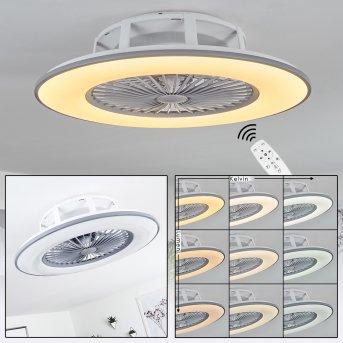 Marmorta Deckenventilator LED Grau, Weiß, 1-flammig, Fernbedienung