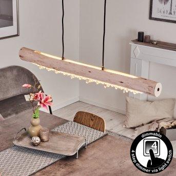Rodeche Pendelleuchte LED Schwarz, 2-flammig