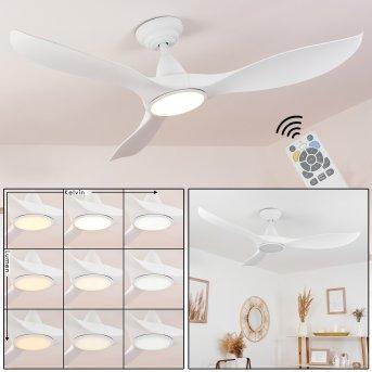 Follseland Deckenventilator mit Beleuchtung LED Weiß, 1-flammig, Fernbedienung