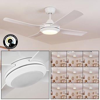 Tjerne Deckenventilator mit Beleuchtung LED Weiß, 1-flammig
