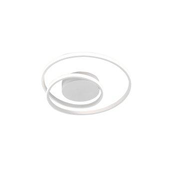Reality Zibal Deckenleuchte LED Weiß, 1-flammig