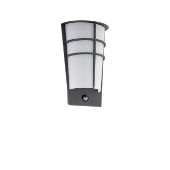 Eglo BREGANZO 1 Außenwandleuchte LED Anthrazit, 2-flammig, Bewegungsmelder
