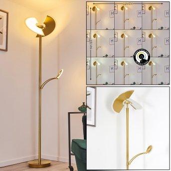 Cazis Stehleuchte LED Gold, 2-flammig