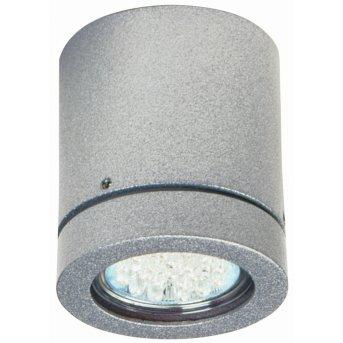 Albert Leuchten 2140 Deckenaufbauleuchte Silber, 1-flammig