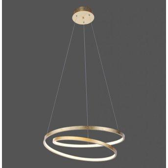 Paul Neuhaus ROMAN Pendelleuchte LED Gold, 1-flammig