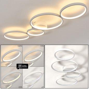 Rodekro Deckenleuchte LED Weiß, 1-flammig