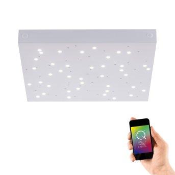 Paul Neuhaus Q-UNIVERSE Deckenleuchte LED Weiß, 1-flammig, Fernbedienung, Farbwechsler