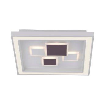 Paul Neuhaus ELIZA Deckenleuchte LED Weiß, 1-flammig