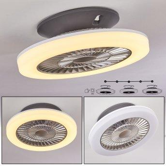 Somalia Deckenventilator LED Silber, Transparent, Klar, 1-flammig