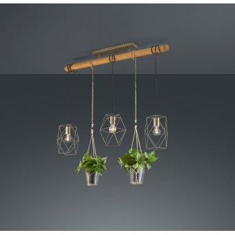 Trio Leuchten Plant Pendelleuchte LED Nickel-Matt, Dunkelbraun, 3-flammig