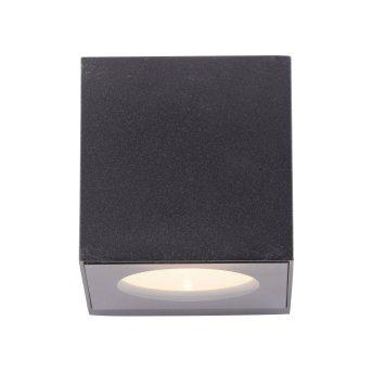 Paul Neuhaus ORANGE Wandleuchte LED Anthrazit, 2-flammig